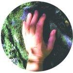 Mindfulness Individual-online directo+soporte. Programa ESTANDO